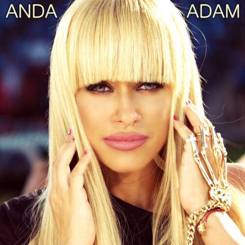 Anda Adam :