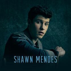 Shawn Mendes main photo