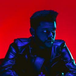 The Weeknd main photo