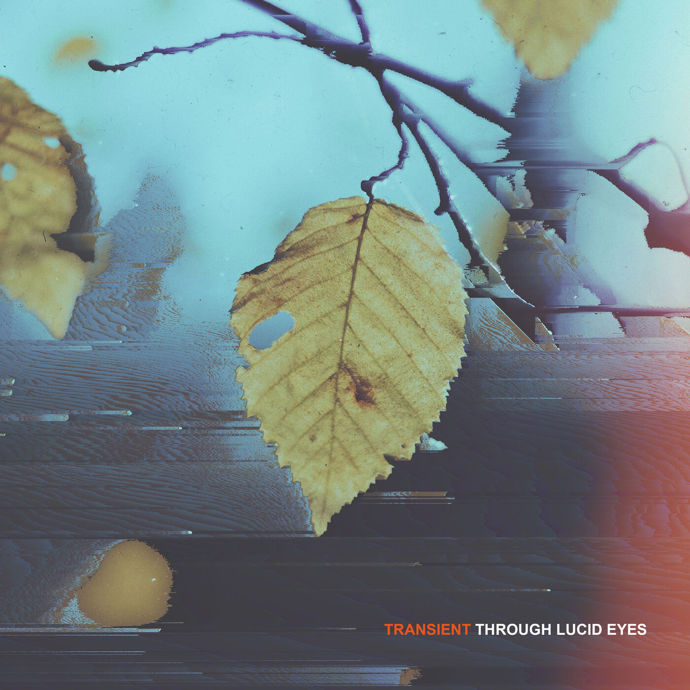 Through Lucid Eyes - Fleeting Moments [single] (2016)