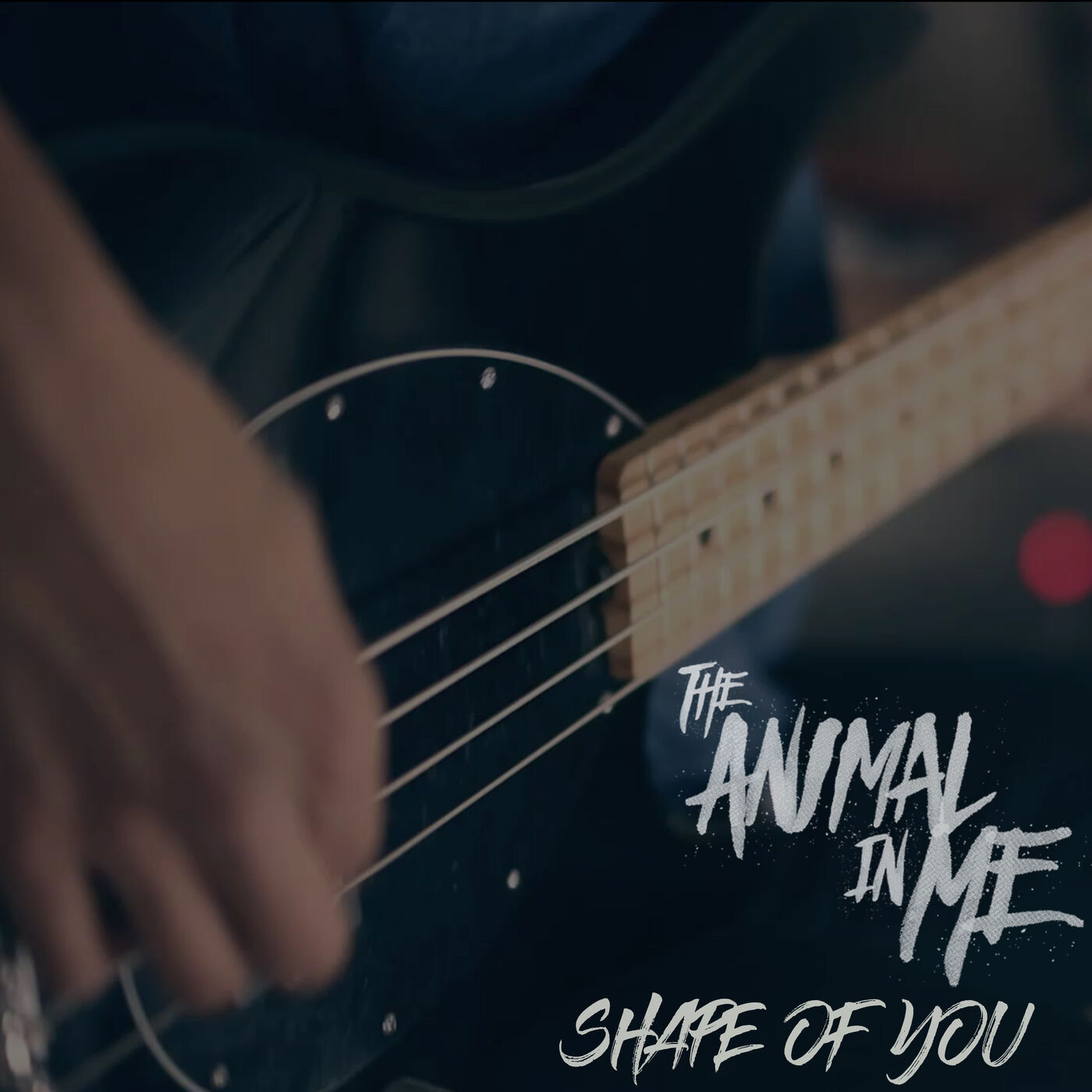The Animal In Me - Shape of You [single] (2017)