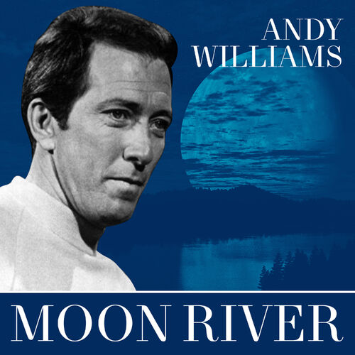Andy Williams - Are You In There? (Tema Dal Film