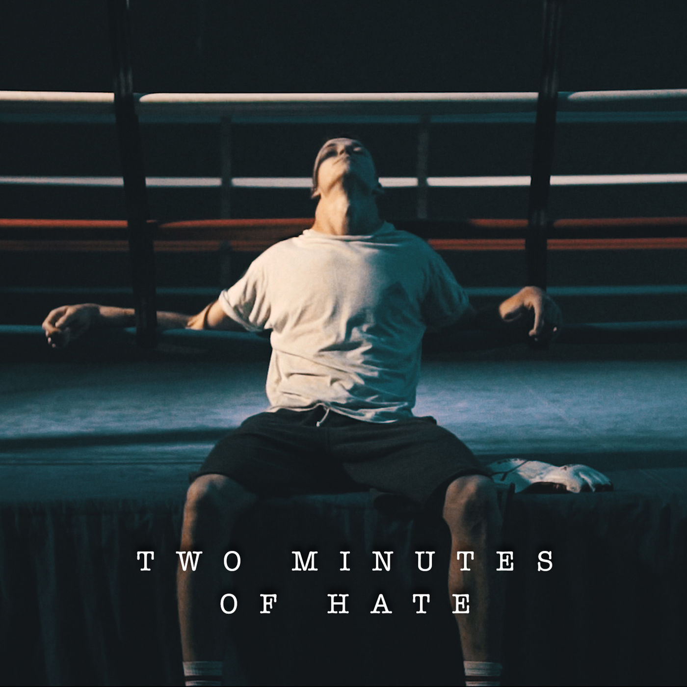 SHVPES - Two Minutes Of Hate [single] (2016)