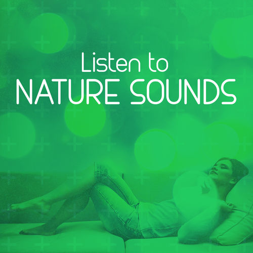 Life at the Waterside - Listen to Nature Sounds