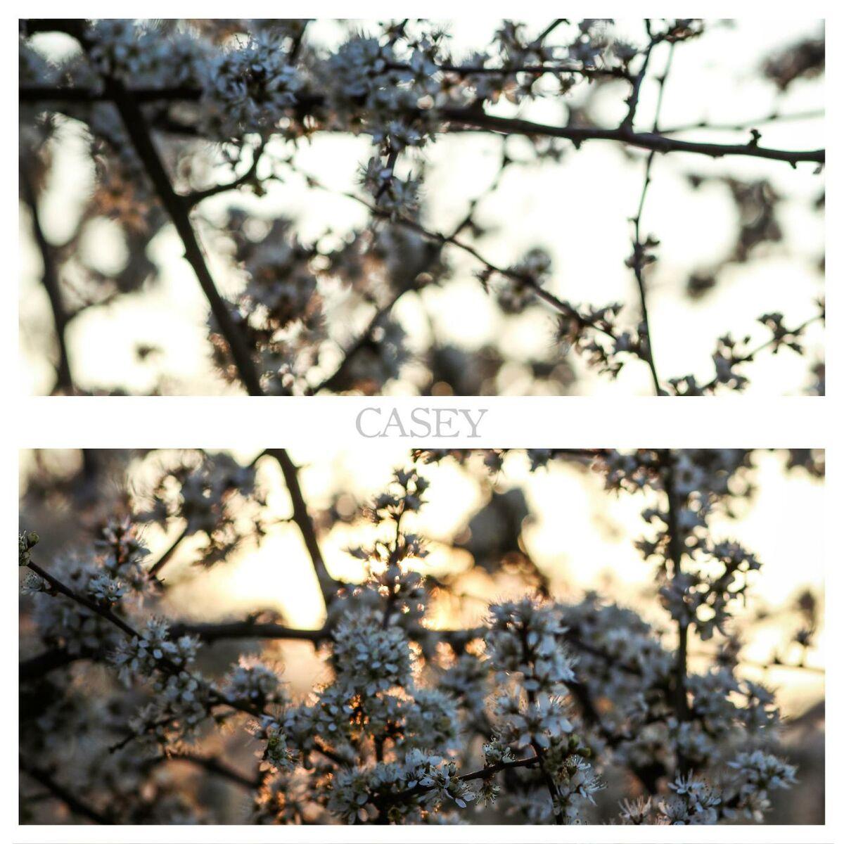 Casey - Fade [EP] (2015)