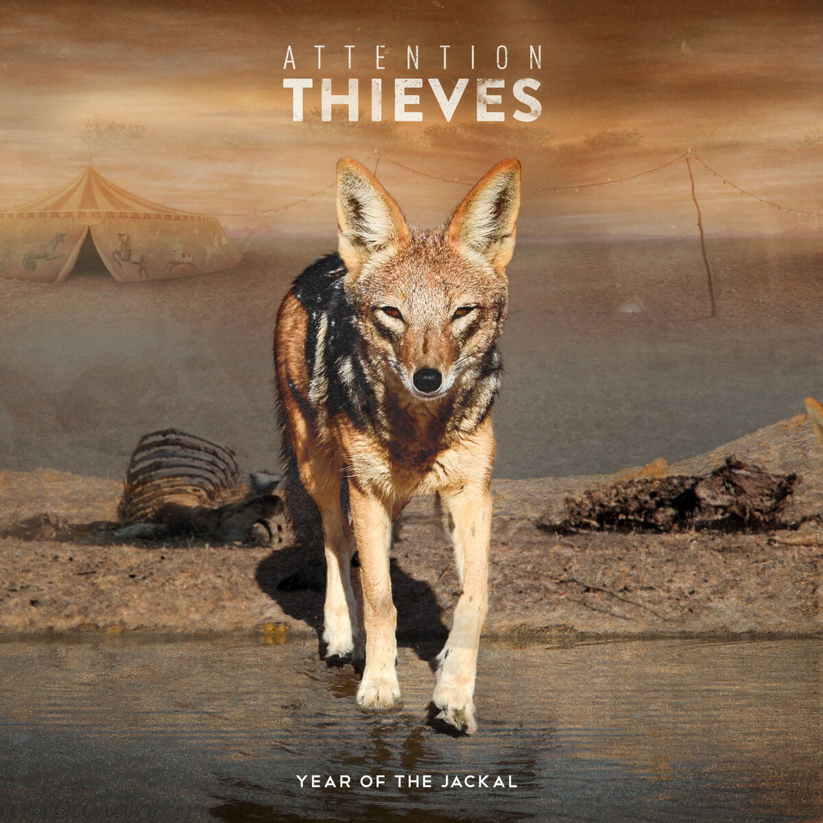 Attention Thieves - Year of the Jackal (2015)