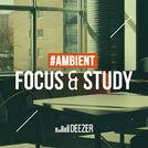 Focus & Study: Brian Eno, Grouper, Huerco S.