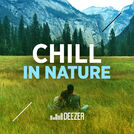 Chill in Nature - Xavier Rudd, Beck, Air